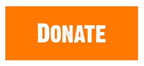 NYL Donate Button